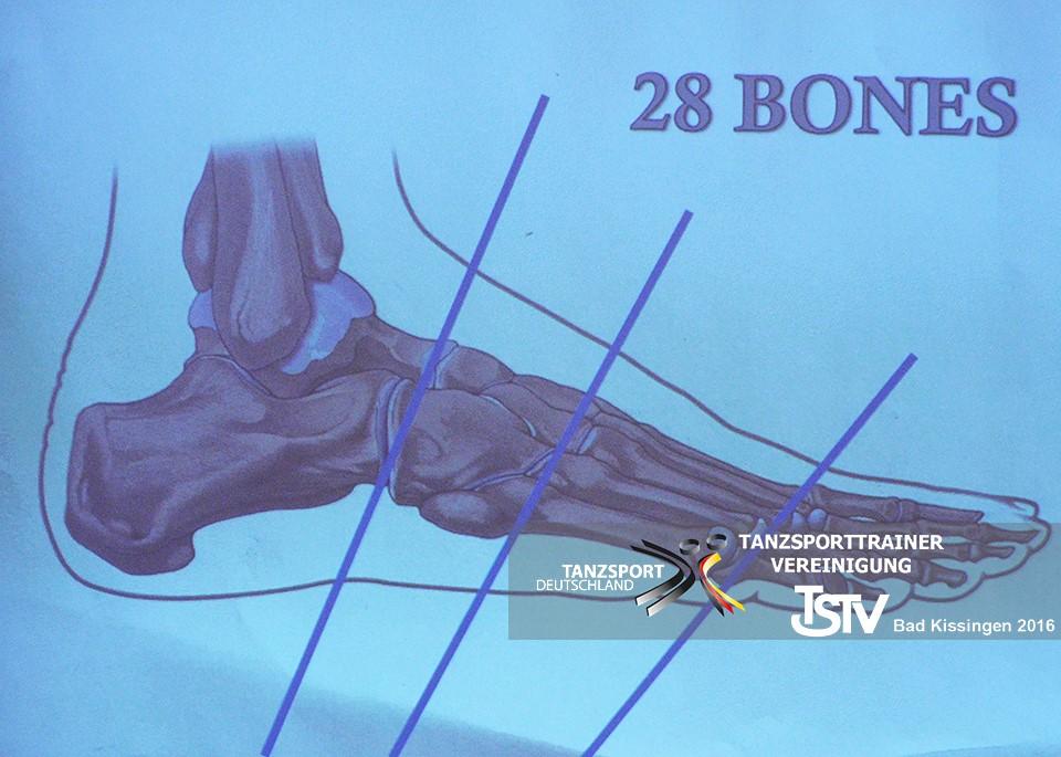 Importancia huesos del pie en el baile - Jordi Mayral
